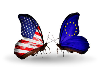 Two butterflies with flags USA and EU