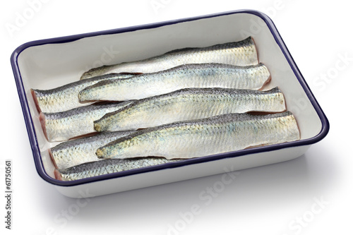 sliced salted herrings on white enamel tray