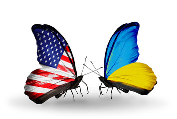 Two butterflies with flags USA and Ukraine