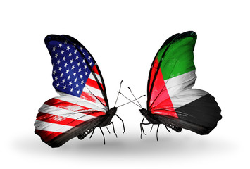 Two butterflies with flags  USA and UAE
