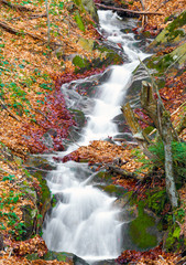 autumn colors arround waterfall