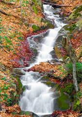 autumn colors arround waterfall