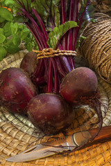 Freshly Picked Beetroot