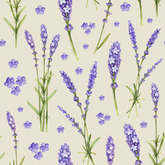 Lavender flower illustrations. Watercolor pattern