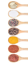 Collection of 7 spices on a wooden spoon