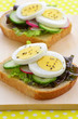 Egg slices on whole wheat bread