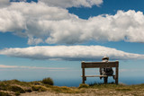 man sitting on wooden bench against  blue sky