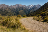 walking track in Kaikoura Ranges
