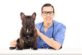 Young male vet posing with bulldog on table