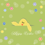 Easter chick sticking its head out of a cut in paper