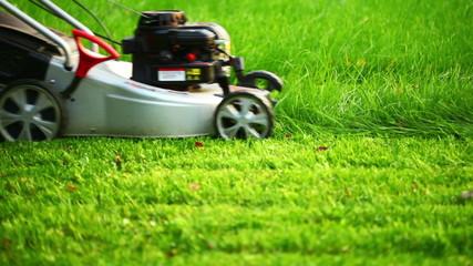 Lawn mower cutting the green grass, HD 1080p
