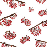 Seamless pattern with rowan