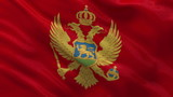 Flag of Montenegro waving in the wind - seamless loop