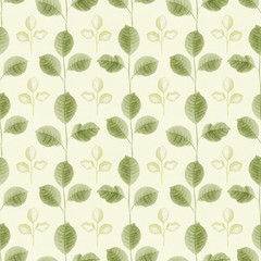 Seamless pattern with a leaves drawing
