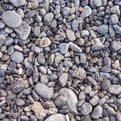 pebble stones as a background texture