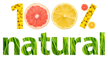 One Hundred Percent Natural Fruits Concept