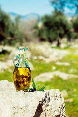 Olive oil with olives in natural environment