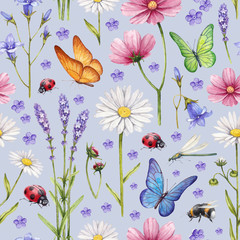 Wild flowers and insects illustration. Watercolor summer pattern