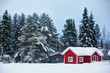 beautiful super Finnish landscape - 61777339