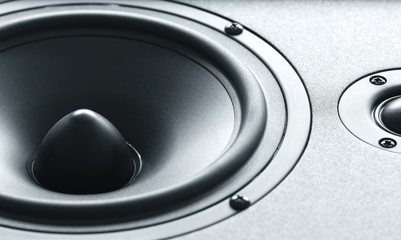 Huge black bass speaker with high quality membrane