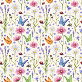 Fototapety Wild flowers and insects illustration. Watercolor summer pattern