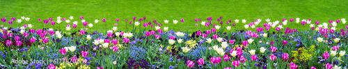 Panel Szklany Blumenwiese als Hintergrund