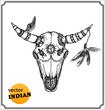 Buffalo skull with feathers for shamans witchcraft
