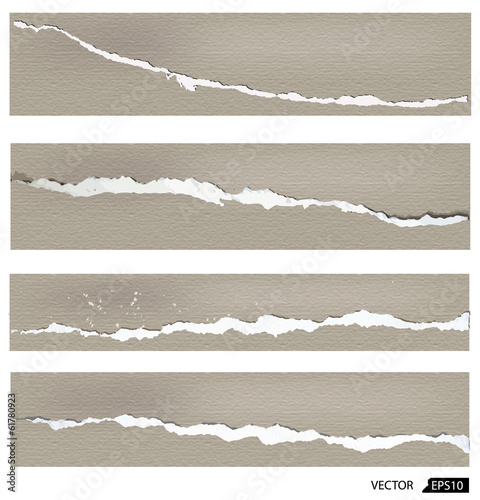 Collection of torn paper, vector illustration