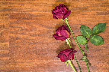Dried roses on laminate floor