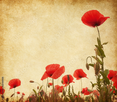 Paper texture with poppies.