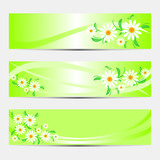 Bright abstract Banners with Camomiles.
