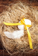 Easter nest with Egg, yellow ribbon and white feather on wooden