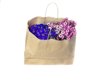 Flowers in shopping bag isolated on white