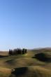 cipressi paesaggio toscano s.quirico d'orcia