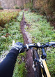 Mountain bike in a trail