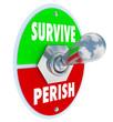 Survive Vs Perish Toggle Switch Choose to Win Endure Attitude