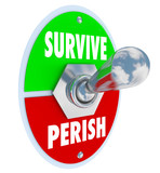 Survive Vs Perish Toggle Switch Choose to Win Endure Attitude