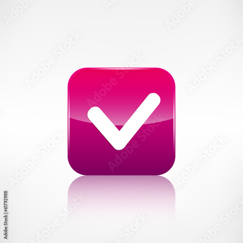 Accepr icon. Yes, ok symbol. Application button.