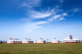 mongolian yurts on the prairie