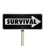 Survival Word One Way Road Sign Endurance Resilience
