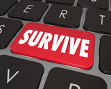 Survive Key Computer Keyboard Win Endure How to Advice poster