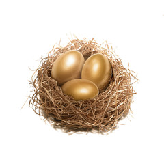 Golden egg nest