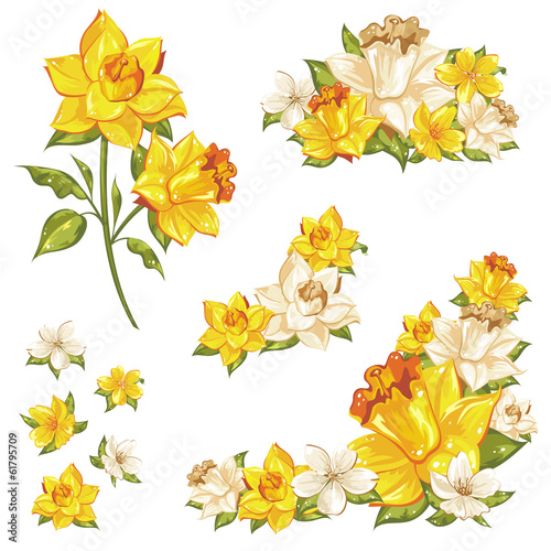 Gentle floral set of flower elements isolated