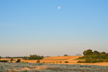 Morning moon over fields