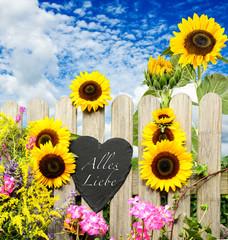 Alles Liebe :) Schiefertafel in Herzform mit Sonnenblumen