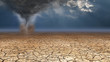 Leinwanddruck Bild - Desert Dust Devil