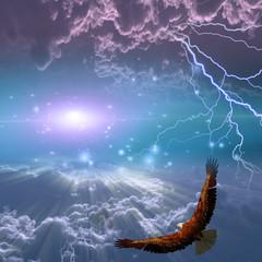 Eagle in flight beneath storm