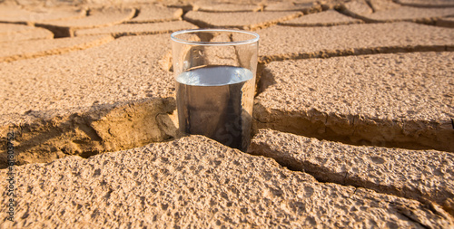 Leinwandbild Motiv A Glass Of Water On Parched Soil