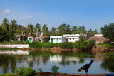 Small Indian village by Buckingham canal in India