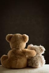 Two Teddy Bears